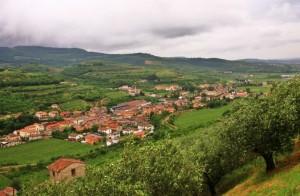 Valle dei ciliegi 2