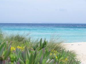 La costa francesce