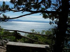 osservare Trieste da lontano