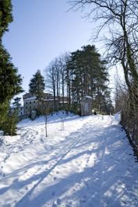 Il castello e il parco di Montaldeo.