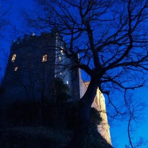 Il Tetro Castello