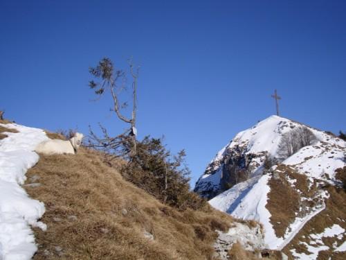 Gandino - La capra e la croce