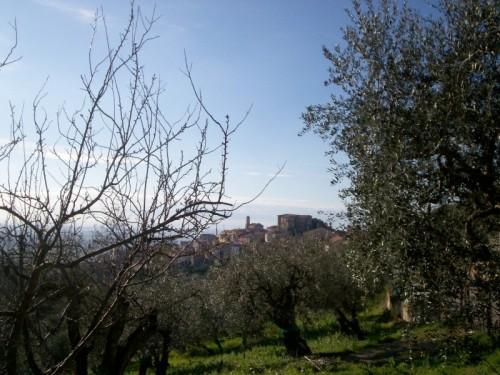 Altavilla Silentina - Castello normanno