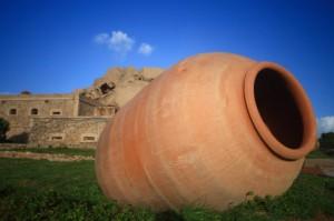 """un """"piccolo"""" particolare a Forte Capellini"""