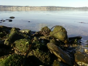 Sant'Antioco…e il suo mare