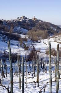 Il paese di Montaldeo e i suoi vigneti.