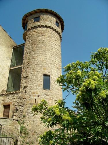 Canepina - La Torre...