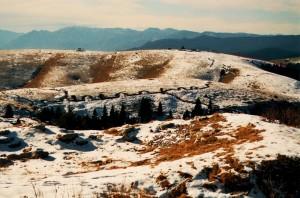 Le ferite della nostra Terra - Le trincee di Monte Fior - FORZA PARIS