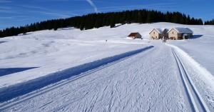 Malga Mandriele Paradiso dello sci da fondo.