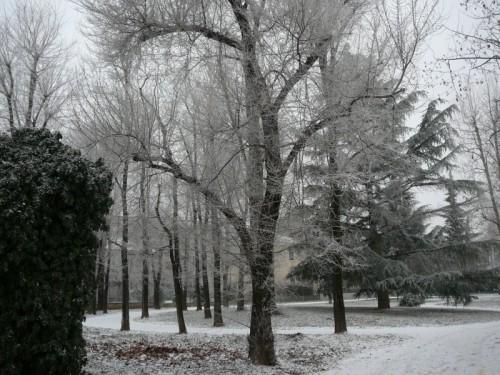 Pinerolo - Dopo la nevicata