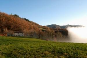 Nebbia a Montese