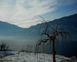 Atmosfera invernale su Ceppo Palazzolo