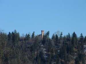 La torre tra i pini