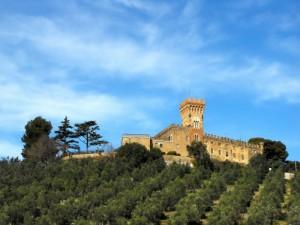 Il castello che domina gli uliveti