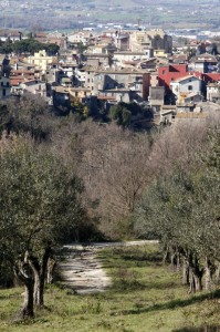 Campagnano di Roma dal parco di Vejo