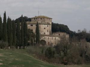 Castelnuovo Tancredi §