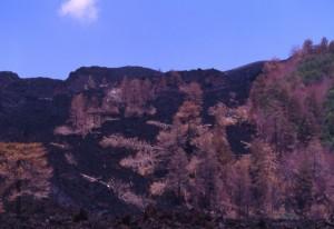 Etna, la colata