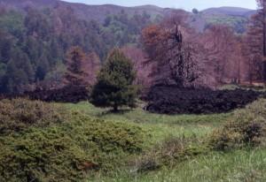 Etna, il fronte della colata