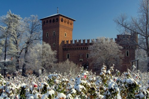 Torino - Rose rosse...