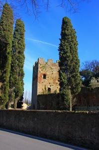 Vicopisano (Mura difensive)