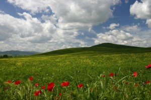 Val d' Orcia 2