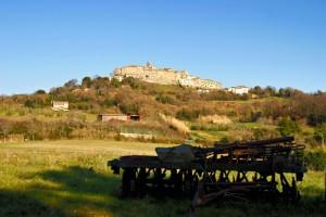Serrazzano: principale risorsa, l'agricoltura.