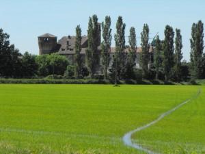 Il castello tra le risaie