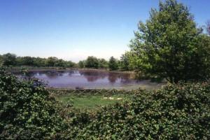 Lago Urio Quattrocchi- Parco dei Nebrodi
