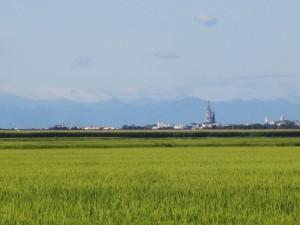 Novara e le risaie, Piemonte