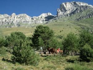 Pian Rosso e il Monte Mongioie
