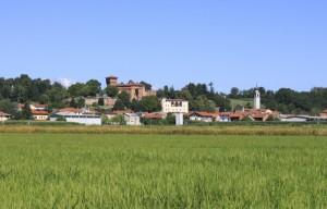 Barengo e le sue risaie, Piemonte