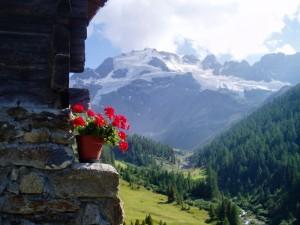 Una Stupenda Escursione al Cima Piazzi 3440 m