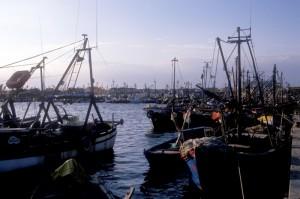 porto di goro