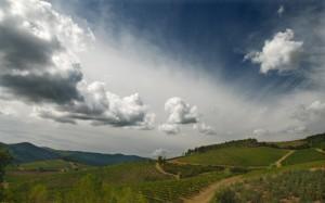 Vertine e i suoi vigneti. E' uno scrigno questa Toscana !!!