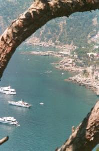 Uno specchio di mare di Capri in una cornice di rami di pino