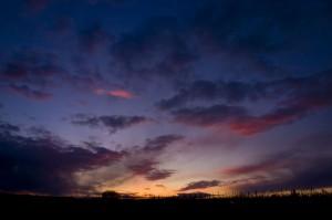 Vigneto Canali al tramonto