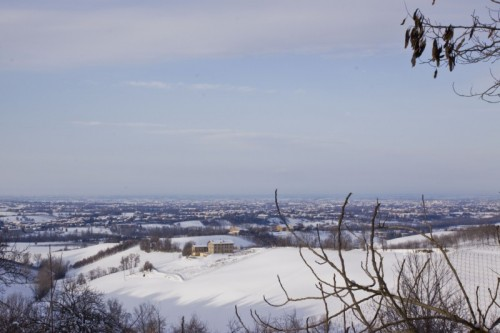 Albinea - Panorama broletto bis