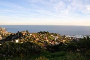 Sanremo e le sue serre