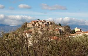 Magli: veduta del borgo attraverso gli ulivi