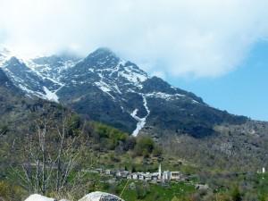 I ghiacciai si sciolgono, la montagna si fa verde