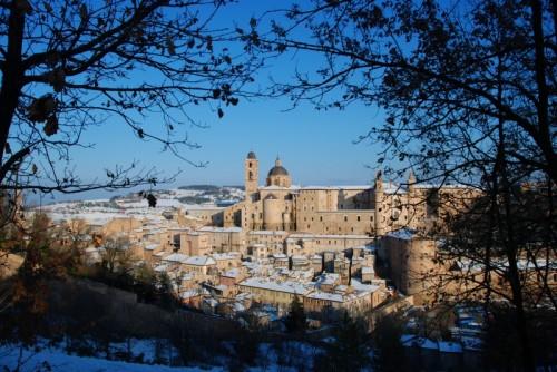 Urbino - Urbino-8
