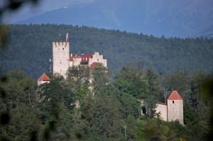 dal cespuglio spio il castello di Brunico