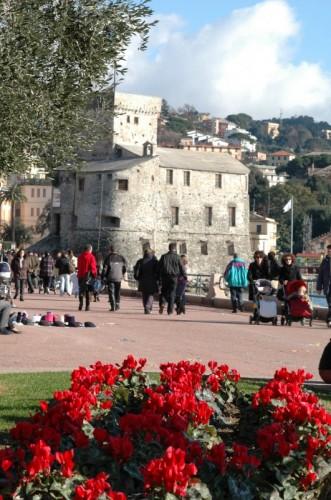 Rapallo - Ancora lui. n 2
