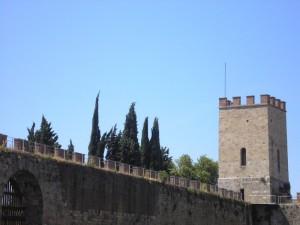 le mura di pisa e la torre di santa maria