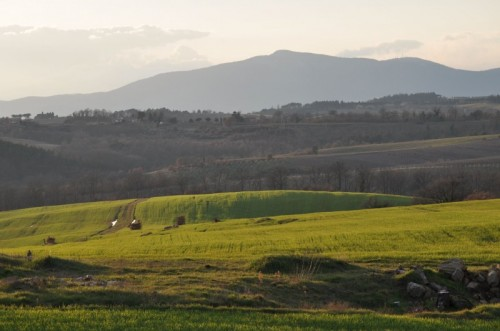 Montegabbione - Panorama