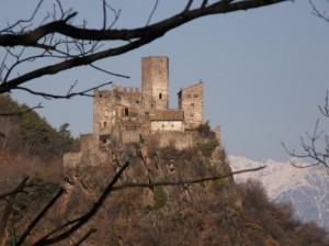 tra i rami …il castello