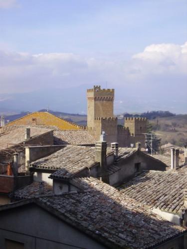 Proceno - Il castello tra i tetti
