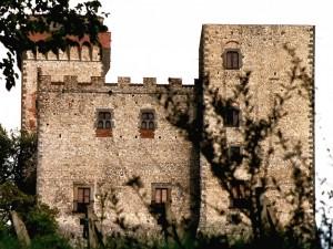 la torre del Castellano