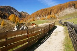 Valle dei mulini e aceri