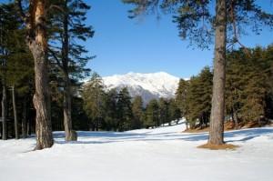 Irriconoscibile… buca n. 1 del Golf Club di Piandisole…. e sullo sfondo il M…